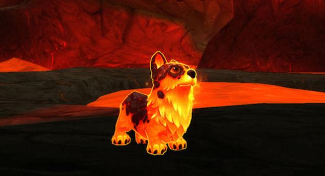World of Warcraft Corgi